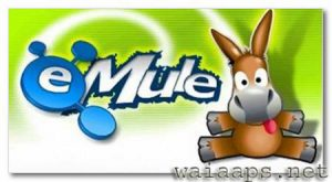 eMule Latest Version Free Download